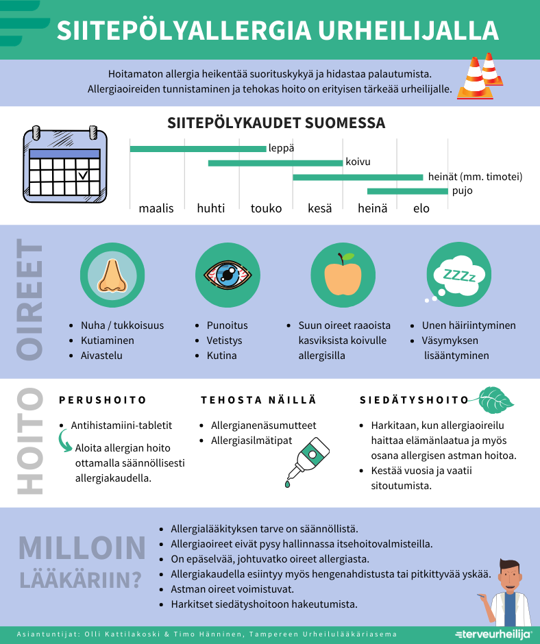 Siitepölyallergia urheilijalla infograafi. Siitepölykaudet Suomessa ovat leppä (maalis-toukokuu), koivu (huhti-kesäkuu), heinät (kesä-elokuu) ja pujo (heinä-elokuu). Oireita ovat nuha, nenän kutiaminen, aivastelu, silmien punoitus, vetistys ja kutina, suun oireet, unen häiriintyminen ja väsymyksen lisääntyminen. Muut tiedot löytyvät tekstistä.